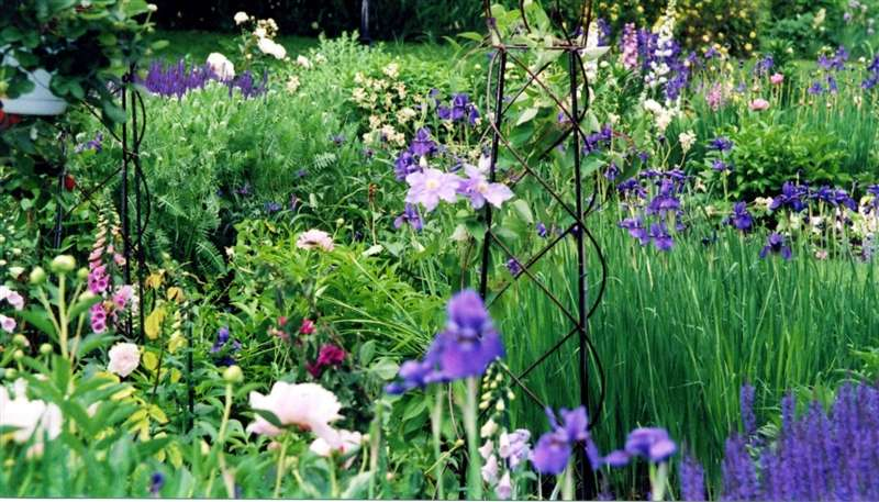 English Garden Design 10 ways to create an english garden Photo Of An Example Of Finished English Garden Design