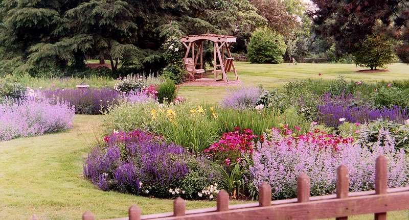 Photo Of An Engish Garden Example 8
